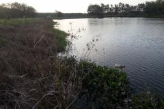 Fishing Site