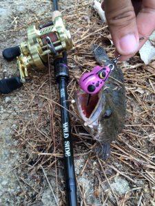ผลลงาน ลูกค้า ที่ใช้เหยื่อยาง ก. กบ เหยื่อยางสำหรับตกปลาช่อน ปลาชะโด